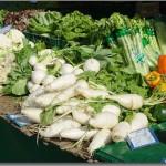 息苦しい風邪による鼻づまりを解消する食べ物10選